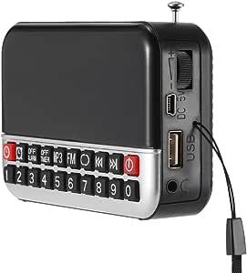 Goofly FM Radio Digital Stereo Speaker 12cm LED Display Alarm Clock & Clock USB Disk TF Card AUX 1500mAh Battery