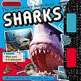 iExplore Sharks