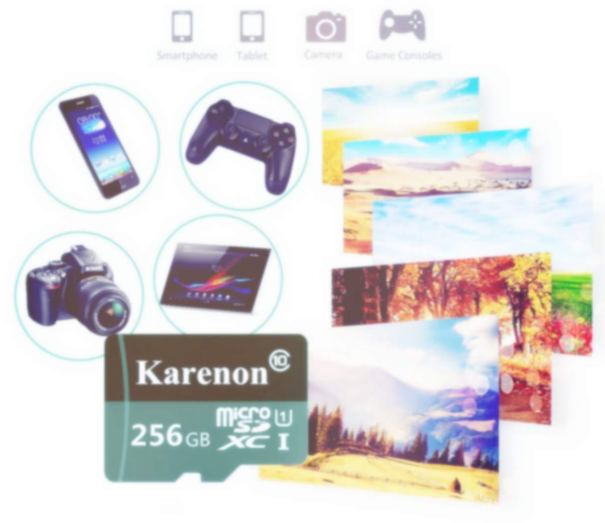 Karenon Tarjeta Micro SD 256 GB, microSDXC 256 GB Class 10 Tarjeta de Memoria + Adaptador (DY135-GF) (256 GB)