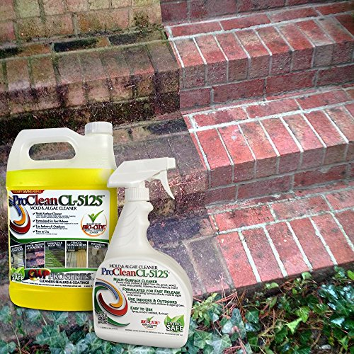 ProClean CL-5125 Mold Mildew Algae Cleaner and Remover 32oz twin pack by CWP ProSeries (Image #1)