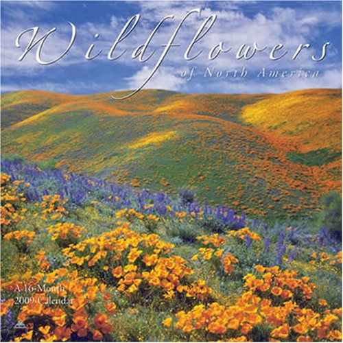 Wildflowers 2009 Calendar