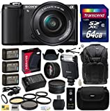 Sony Alpha A5000 20.1 MP Interchangeable Mirrorless Lens Camera with 16-50mm OSS Lens ILCE5000L (Black) with Advanced Accessories Bundle Kit includes Sony HVL-F20M External Flash + 64GB Class 10 SDHC Memory Card + x3 Replacement (1200mAh) NP-FW50 Battery