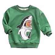 HUAER& Boys Girls Cartoon Shark Print Sweater Spring & Autumn Tops (18 Months -2T (Height 80-90 cm / 31-35 inch), Green)