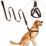Step-in Dog Harness Leash, PETBABA Reflective Safe at Night Walking Soft Chest Vest Harness with Quick Release Clip Good for Training Your Pet