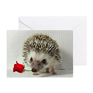 Amazon Cafepress Hedgehog With Rose Greeting Card Note