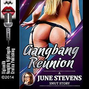 Gangbang Reunion Audiobook