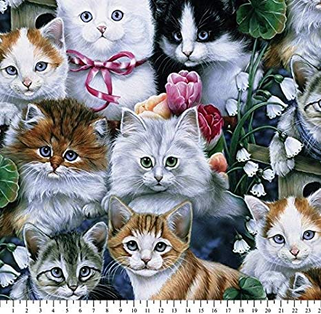 Kittens Cats Fleece Throw Blanket With Finished Edges Home Kitchen