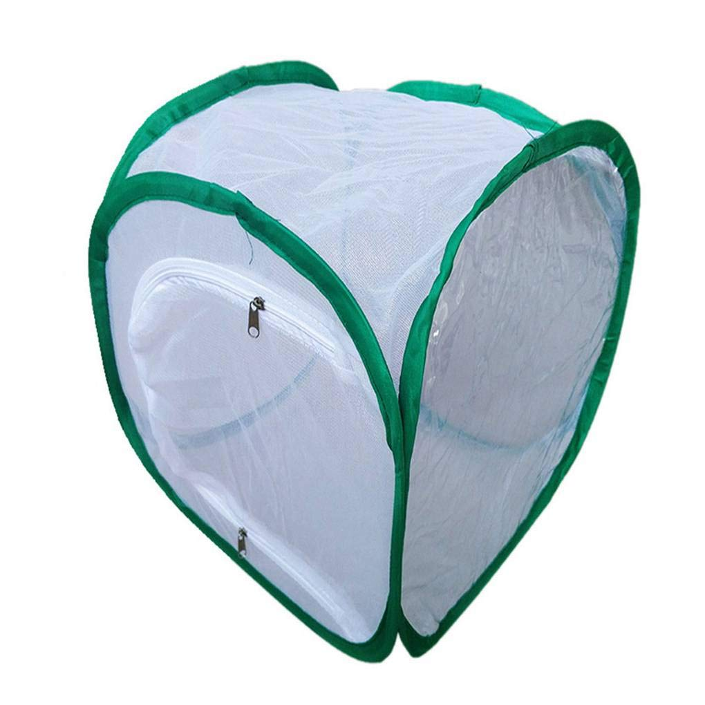 Lidahaotin Foldable Light-transmitting Insect Butterfly Habitat Net Mesh Terrarium with Zipper Opening #1 30x30x30cm