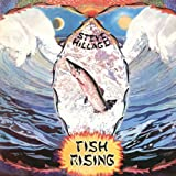 Fish Rising by Steve Hillage (2007-06-19)