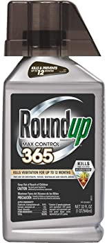 Roundup Concentrate Max Control 365 Weed Killer