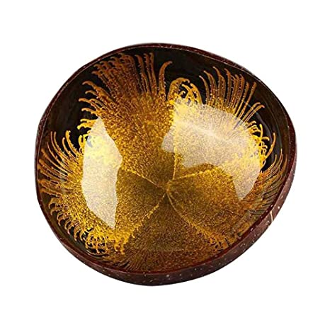 New Natural Coconut Shell Bowl Dishes Handmade Kitchen Paint Craft Home Decor