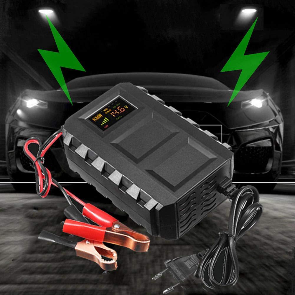 per batteria al piombo sigillata marina della falciatrice da giardino della barca dellautomobile manutentore di ricarica rapida portatile della batteria Caricabatteria astuto 12V 20A