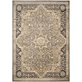 Safavieh Vintage Collection VTG574D Transitional Oriental Medallion Taupe and Black Distressed Area Rug (8' x 11')