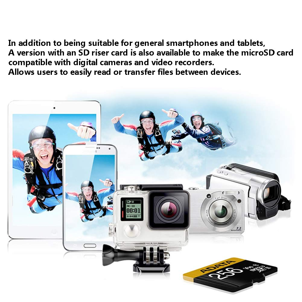 xb Tarjeta de Memoria de 100GB + Adaptador SD con Rendimiento de ...