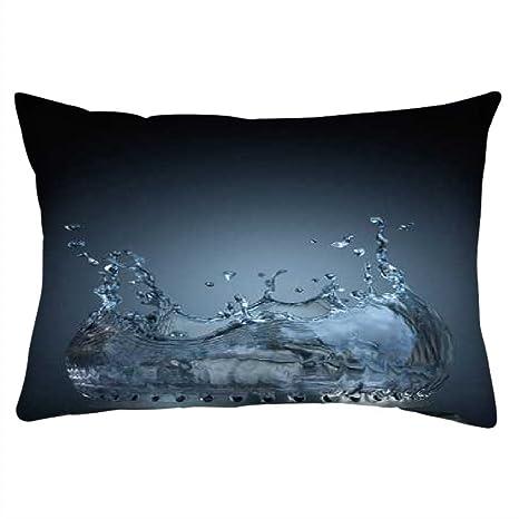 Snoogg Agua Estufa Rectángulo Toss Throw Pillow Cojín Funda Decoarative funda de almohada 12 x 20