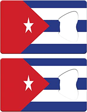 BAD CREDIT NO CREDIT OK X-Large WINDLESS Swooper Flag