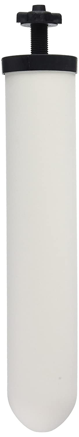 """Doulton W9121715/W9121709 10"""" Super Sterasyl Ceramic Filter Candle-Pack of 2"""