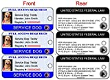 Xpress ID Service Dog ID Key Tag (Set of 3) | Includes Registration to National Dog Registry