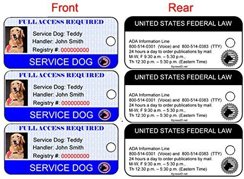 Xpress ID Service Dog ID Key Tag (Set of 3) | Includes Registration to National Dog Registry by Xpress ID