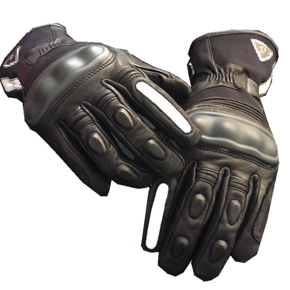 オートバイグローブスポーツアウトドアレーシンググローブライドオフロードグローブバイクバイク用サイクリングレーシング (サイズ : L) Large  B07FSS1SKN