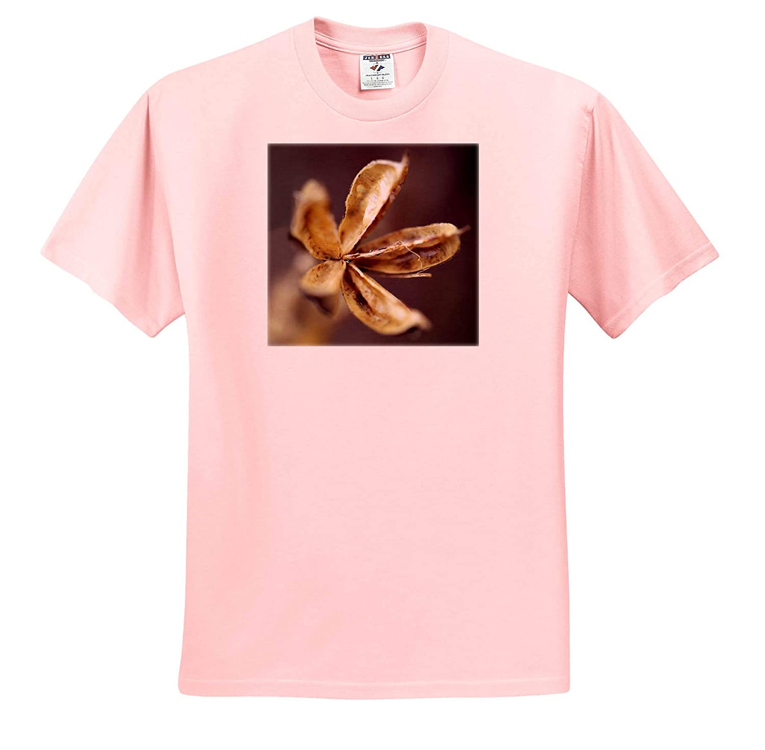 A Macro Photo of a Dried up Rose of Sharon Seed pod from Our Garden Flowers 3dRose Stamp City T-Shirts