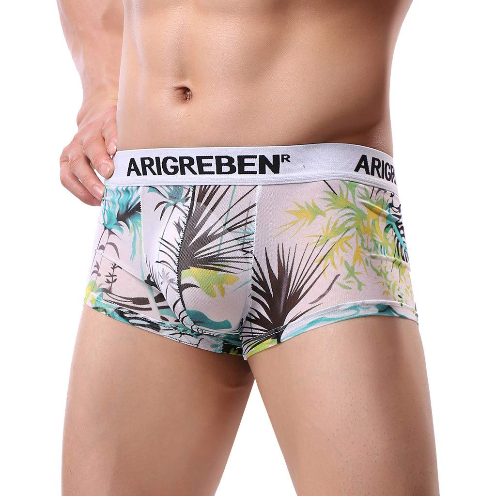 Mens Boxer Briefs Breathable Underwear Raised Print Arigrebren Sexy Four-Corner Shorts (B,M)