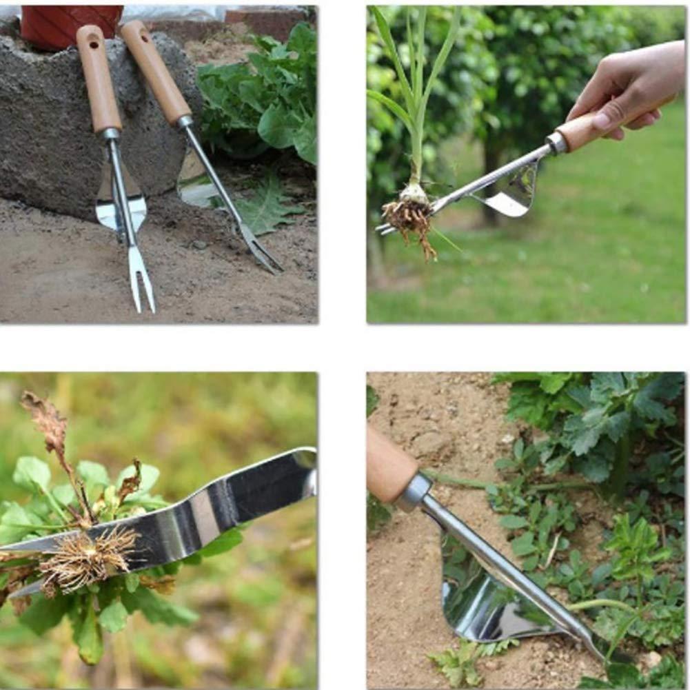 1Pcs Garten Hand Weeder Edelstahl-manuelle Unkrautstecher schnell und Arbeit sparende Zubeh/ör Premium-J/äten Werkzeuge Garten