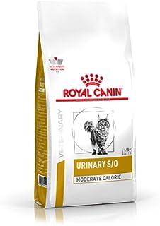 Royal Canin C-58253 Diet Feline Urinary - 1.5 Kg: Amazon.es: Productos para mascotas