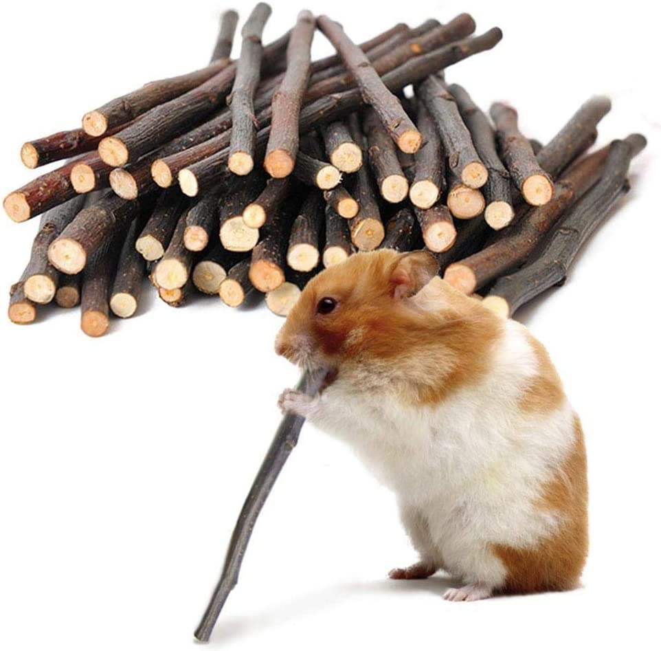 CCAN 200G Apple Sticks Wood Chew Toy for Hamster Rabbit Gerbil and Small Animals Cleaning Teeth