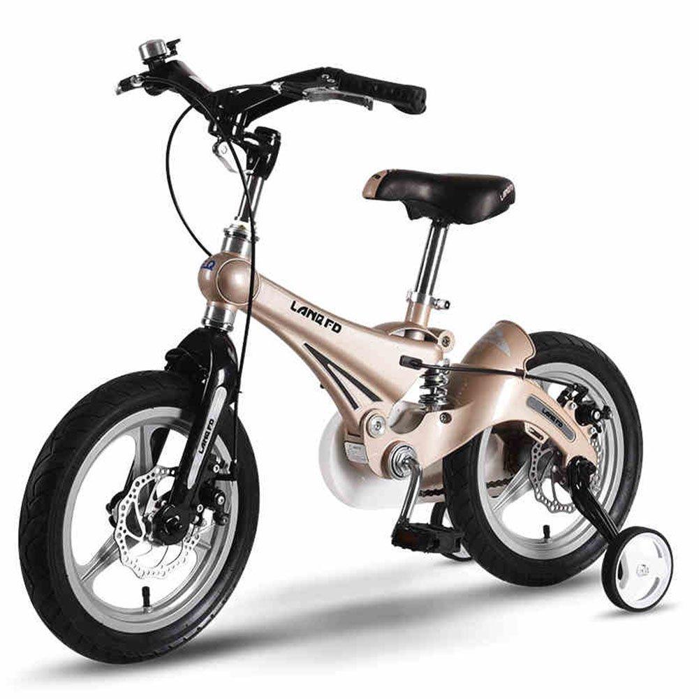 Bicicleta para niños 12/14/16 pulgadas Baby Stroller 3-6 años Bicicleta de bicicleta de montaña Bicicleta de bicicleta para niños ( Color : Oro , Tamaño : 12 inch )