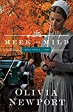 Meek and Mild (Amish Turns of Time Book 2)