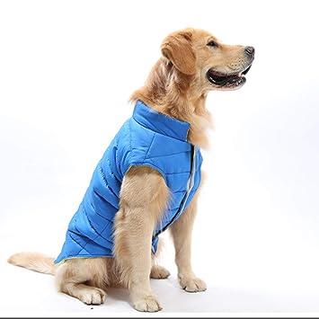 LOVEPET Ropa para Mascotas Ropa para Perros Golden Retriever Labrador Perros Grandes Y Medianos. Chaleco Impermeable: Amazon.es: Deportes y aire libre