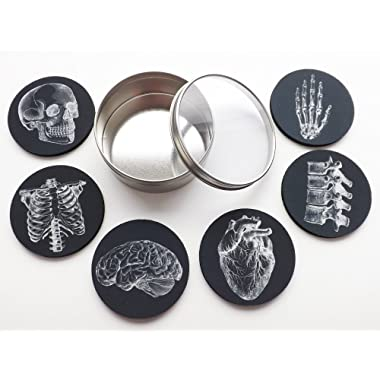 Anatomy Goth Gift Set Drink Coasters skull anatomical heart male nurse practitioner doctor physician assistant