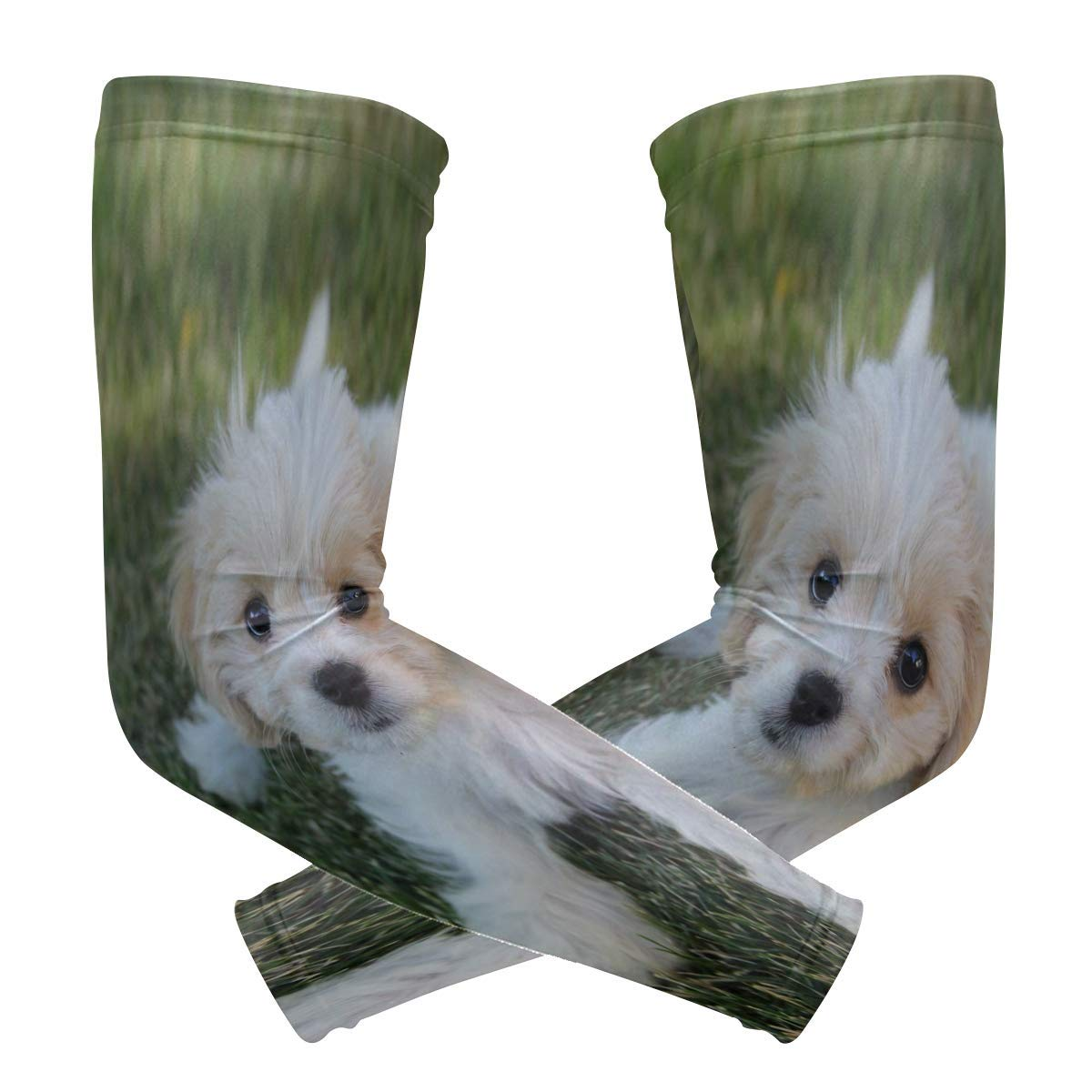 Arm Sleeves Cavachon Puppy Mens Sun UV Protection Sleeves Arm Warmers Cool Long Set Covers White