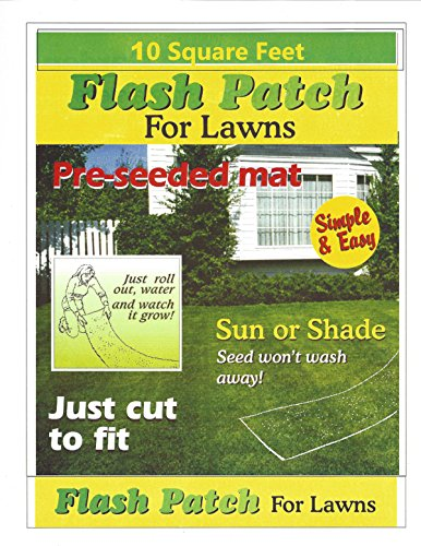 EnRoot Products Flash Patch for Lawns (10 Sq. ()
