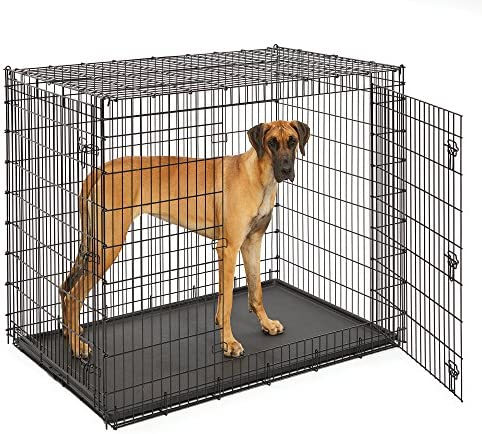 MidWest Homes for Pets XXL Giant Dog Crate 54-Inch Long Ginormous Dog Crate Ideal for a Great Dane, Mastiff, St. Bernard Other XXL Dog Breeds