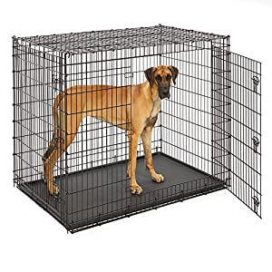 MidWest Homes for Pets XXL Giant Dog Crate | 54-Inch Long Ginormous Dog Crate Ideal for a Great Dane, Mastiff, St. Bernard & Other XXL Dog Breeds 7