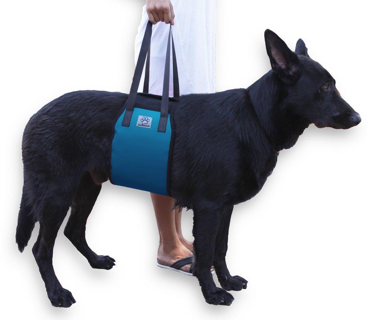 Arnes mascota lesiones,artritis patas traseras-Extra Grande