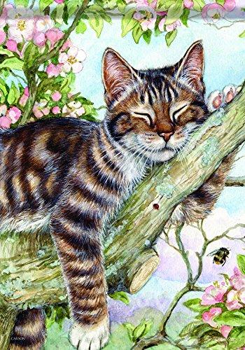 Cat tree ever