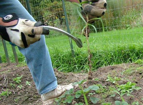CobraHead weeder /& Kultivator Garten Handwerkzeug
