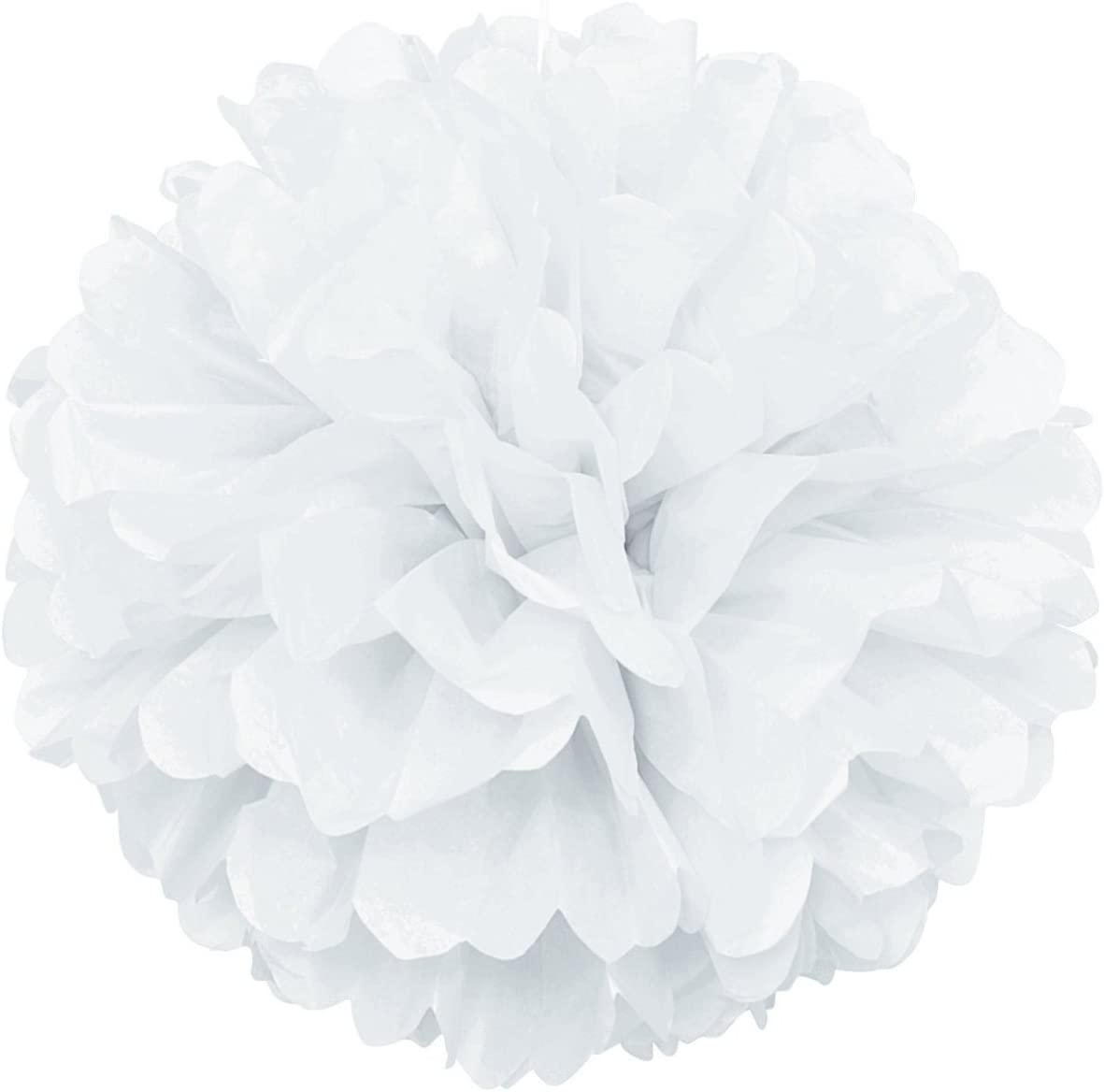 Lightingsky 10pcs DIY Decorative Tissue Paper Pom-poms Flowers Ball Perfect for Party Wedding Home Outdoor Decoration (10-inch Diameter, White)