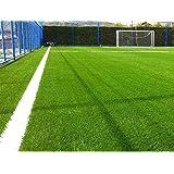 62.000 Sementes De Grama Bermuda Campo De Futebol (20m²)