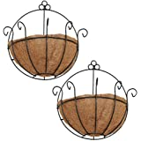 PERTTY 2 Pcs Iron Wall Hanging Planters Basket 9.8 Inches Half Round Plant Flower Wall Holder with Coco Coir Liner Plant Hang