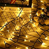 RECHING Flexible LED Branches String Lights,Fairy Lights,Artificial Tree Branch Pendant String Lights for Bedroom Patio Garden Parties Christmas Holiday(Warm White)