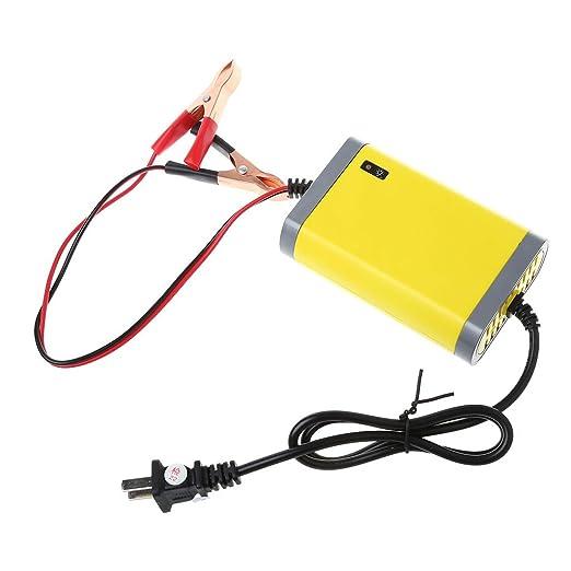 yinuneronsty - Cargador de batería automático para Moto de ...
