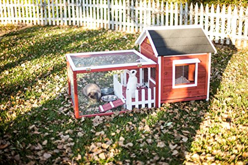 white picket fence rabbit hutch