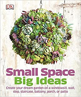 Small Space Big Ideas: DK: 9781409344193: Amazon.com: Books