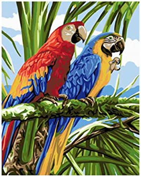 PAINTYTY Loro DIY by Numbersoil Paint Pintura para Colorear Sin ...