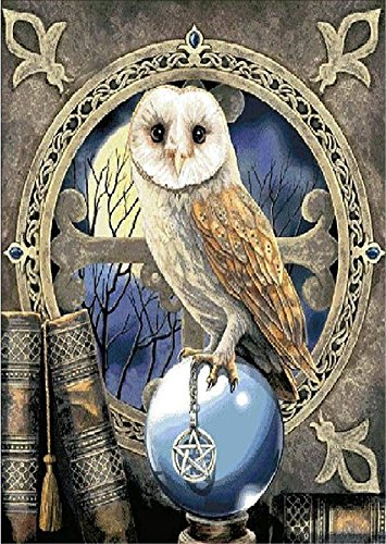 YEESAM ART New 5D Diamond Painting Kit - Owl & Crystal ball - DIY Crystals Diamond Rhinestone Painting Pasted Paint by Number Kits Cross Stitch Embroidery (Diy Crystal Ball Halloween)