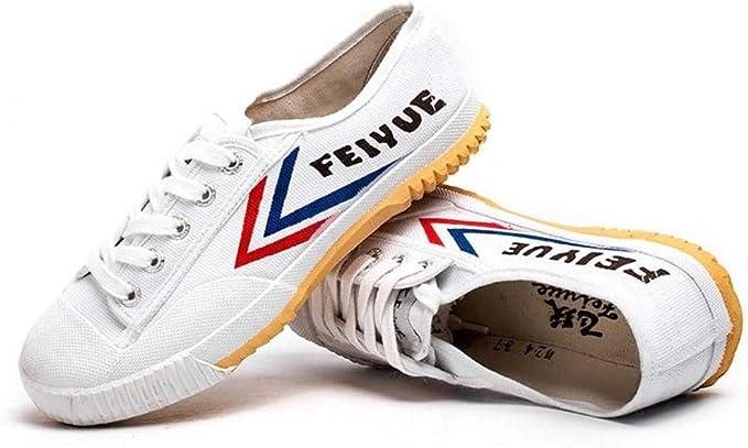ANXWA - Zapatillas de artes marciales, zapatillas de pista, zapatos de niños, adultos, zapatos de Tai-chi, zapatos de lona unisex antideslizantes, blanco, 38EU: Amazon.es: Hogar